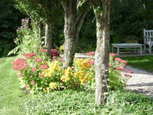 celeb._garden_ 2